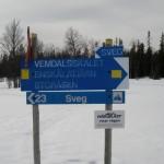Ledkorsning Björnåsdammen