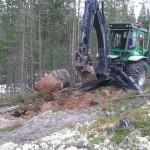 Stenplockning
